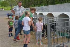 Kinderen en boer bij kalfjes van boerderij